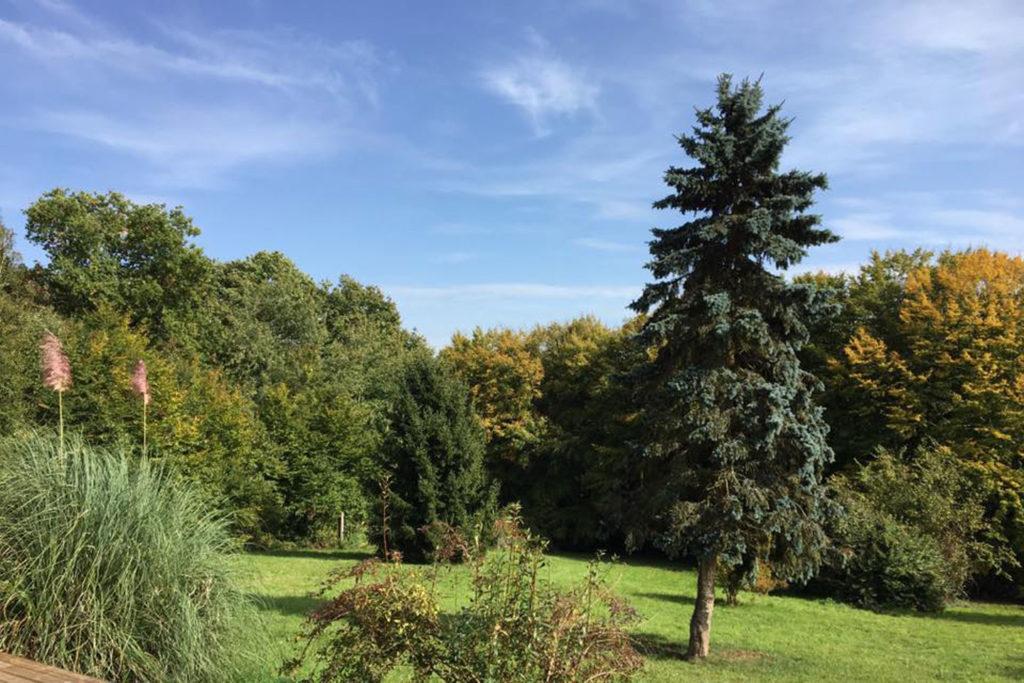situation maison forestière de bellevue